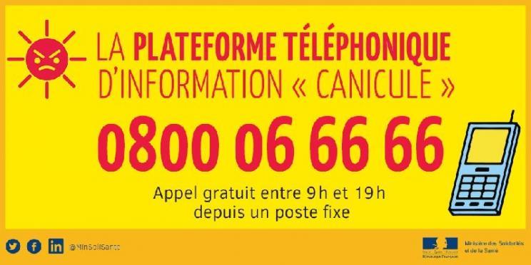 vignette_canicule_info_service
