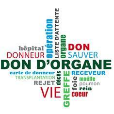 donorgane
