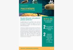 gabarit_visuel_mediatheque_3